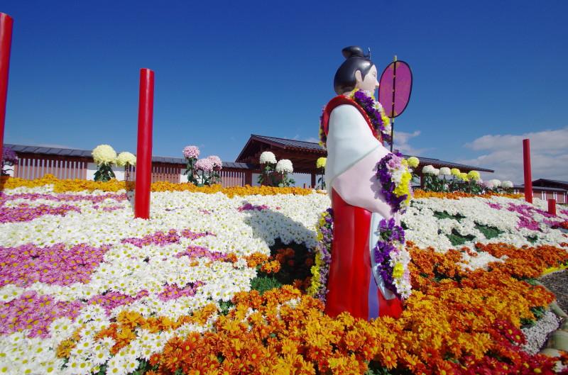 平城京天平祭 秋2014 天平菊人形1