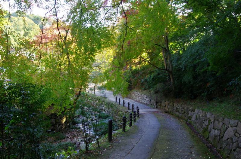 正暦寺 本堂への紅葉1