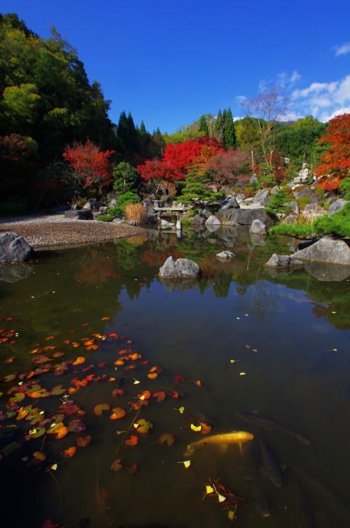 当麻寺 奥院 庭園紅葉