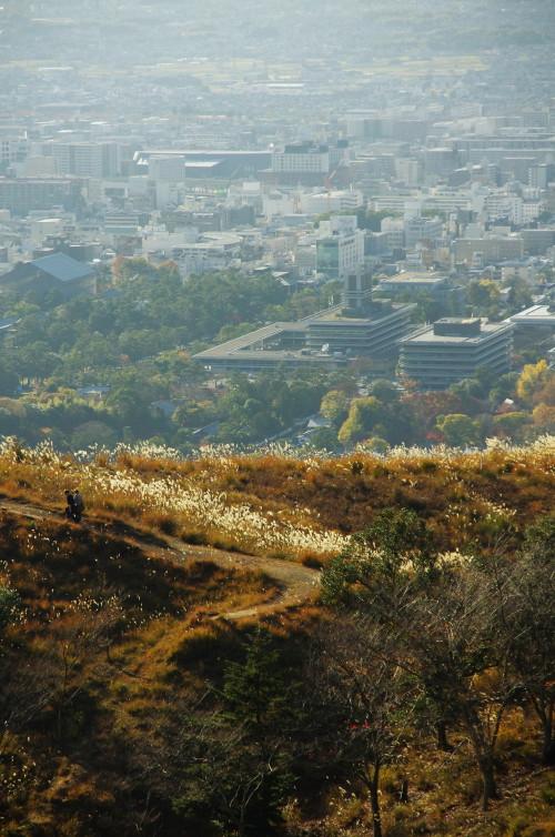 奈良公園 紅葉 若草山山頂1