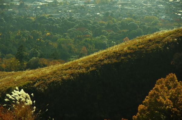 奈良公園 紅葉 若草山山頂0