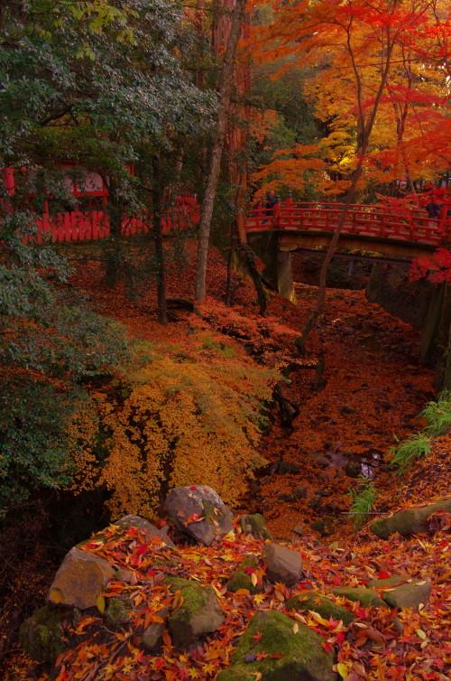 奈良公園 紅葉 水谷茶屋
