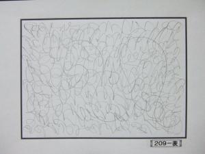 魂胆光編-00209表