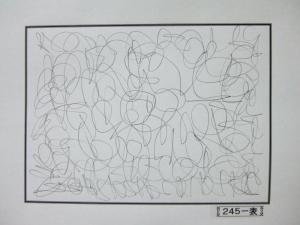 魂胆光編-00245表