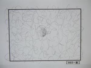 魂胆光編-00893表