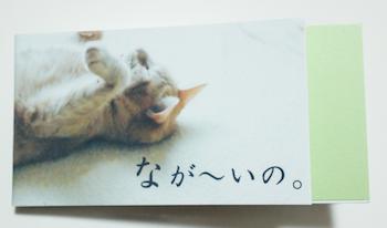 nagaino1-1.png