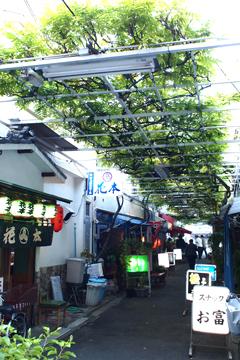 浅草の飲屋街