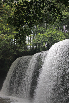 おっきーい滝