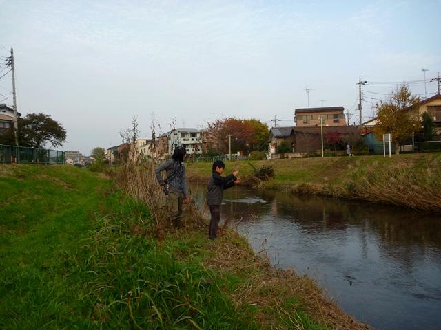 20141124_11.jpg