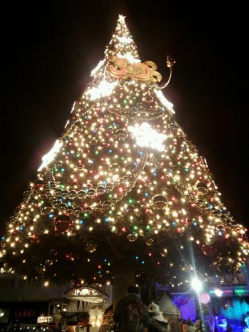 20131215クリスマスデコ2
