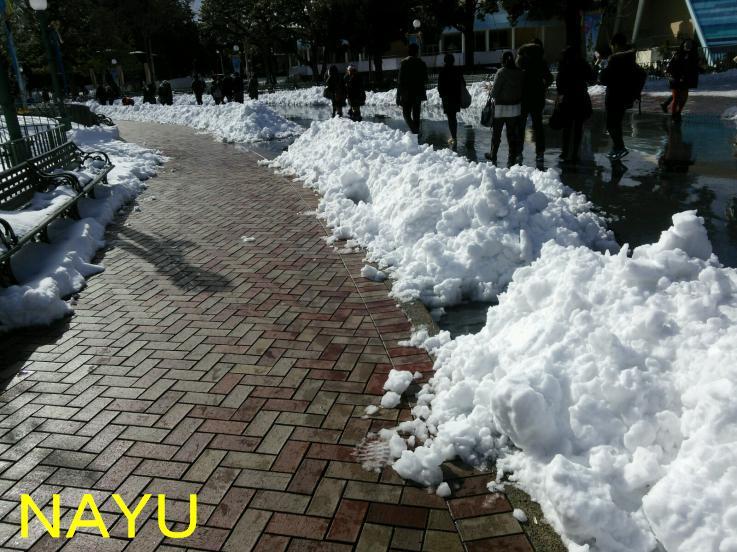 20140209雪のランド3