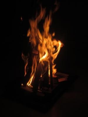 lohri14-bonfire.jpg