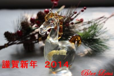 newyear2014.jpg