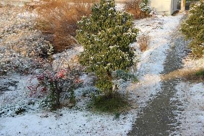 newyears13-snow.jpg