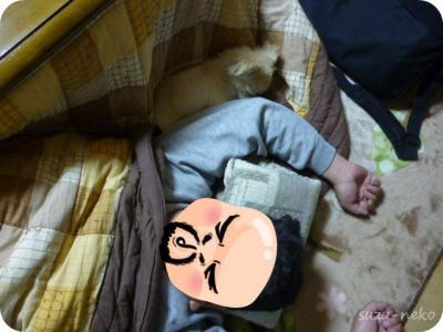 とーちゃんと寝る1