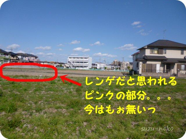 20130508_4.jpg