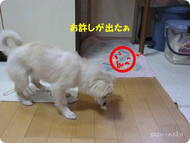 20130514_42.jpg