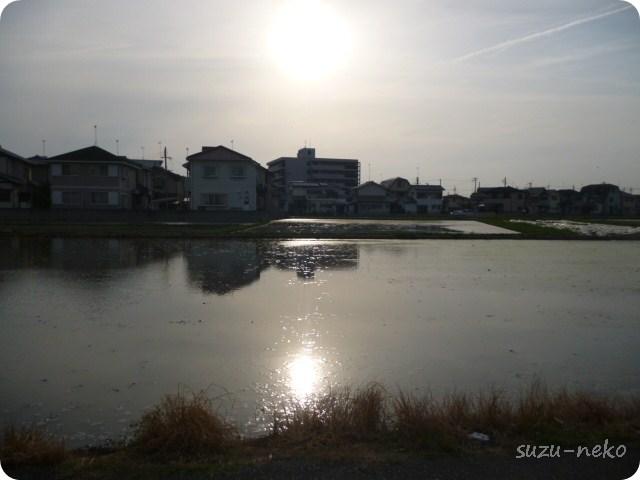 琵琶湖です・・・ウソです!