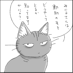 dagusan18.jpg