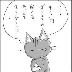 dagusan31.jpg