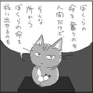 dagusan32.jpg
