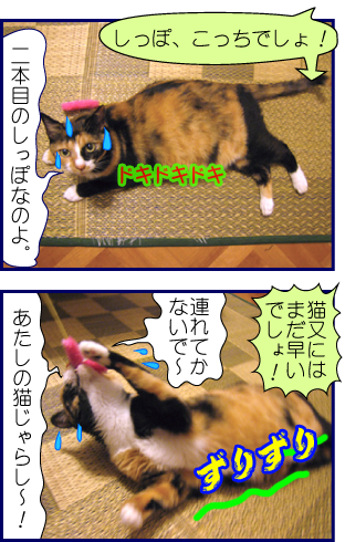 120821mg-2.png
