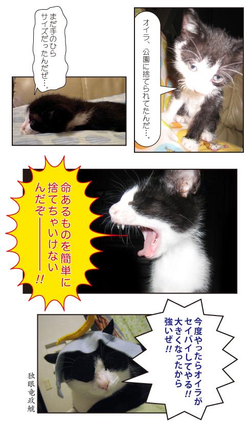 猫の大口ブログトーナメント - 猫ブログ村