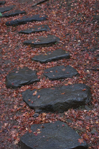 石畳と落ち葉