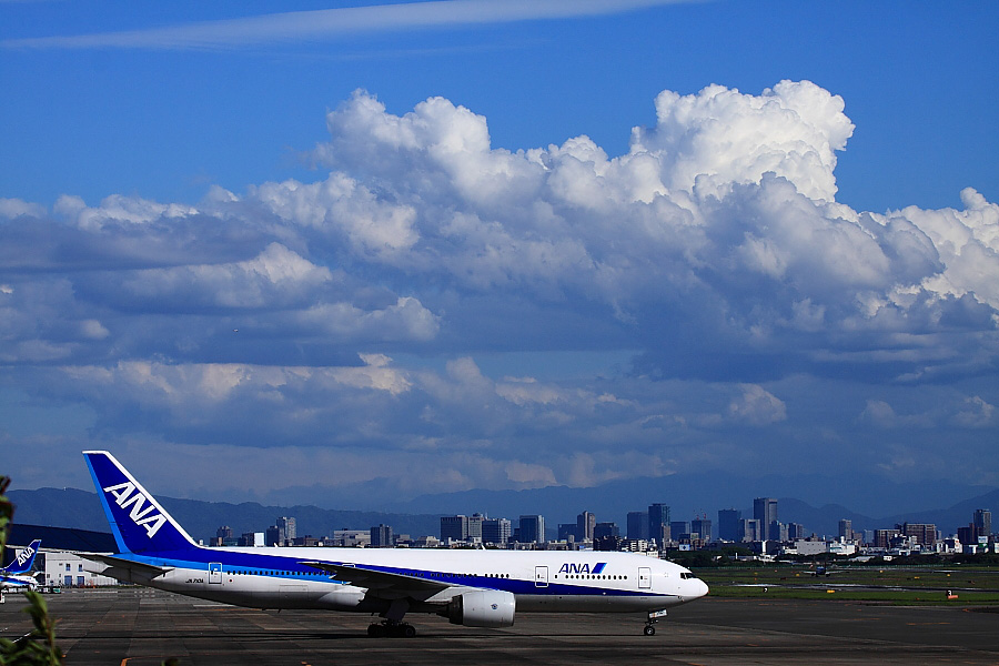 ANA B777-281ER JA710A@下河原緑地展望デッキ(by EOS 50D with EF100-400mm F4.5-5.6L IS USM)