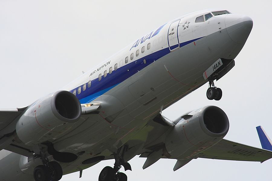 ANA B737-781 ANA443@下河原緑地展望デッキ(by EOS 40D with SIGMA APO 300mm F2.8 EX DG/HSM + APO TC2x EX DG)