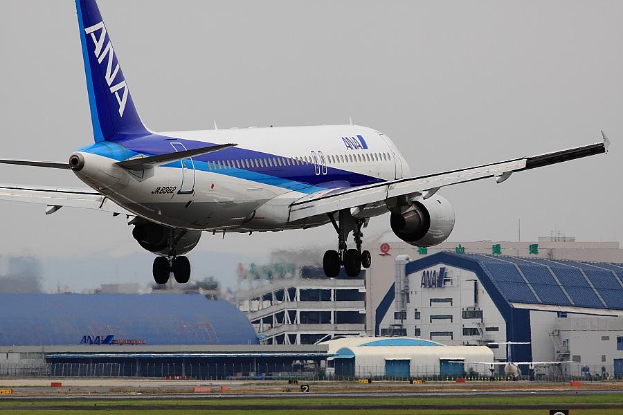 ANA A320-211 ANA558@RWY14Rエンド猪名川土手(by EOS 50D with SIGMA APO 300mm F2.8 EX DG/HSM)