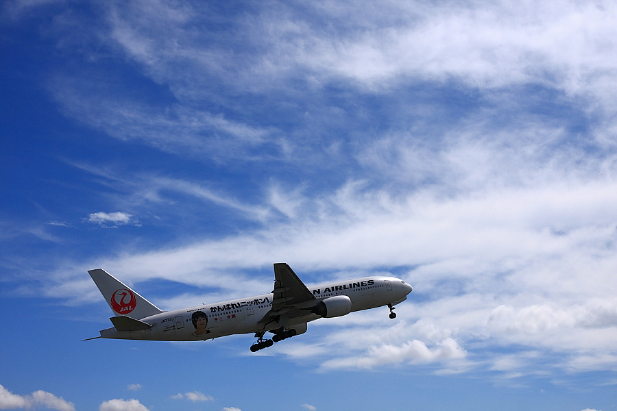 JAL B777-246 JAL110@伊丹スカイパーク(by EOS 40D with SIGMA 18-50mm F2.8 EX DC MACRO)