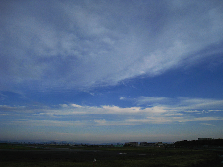 今日の伊丹の空@エアフロントオアシス沿道(by IXY DIGITAL 910IS)