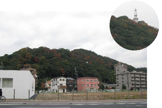 IMG_3966 実家の裏山