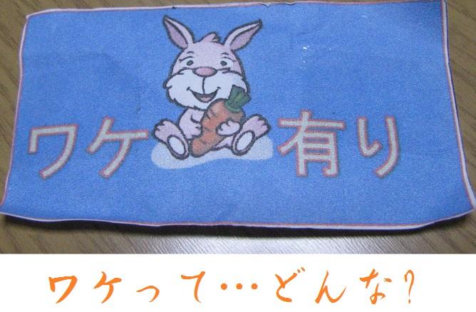 IMG_4153 ワケアリ