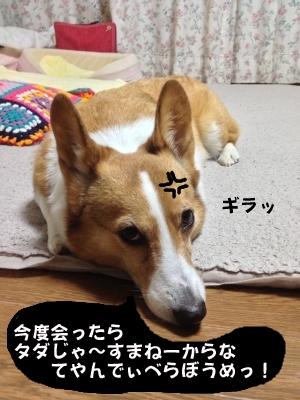 ijikejiro.jpg