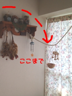 madotori-001.jpg