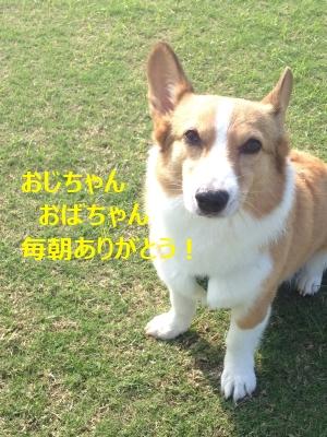 ojiro77.jpg