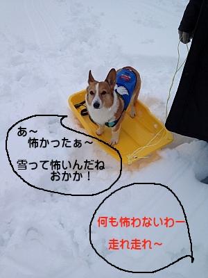 sorijiro003.jpg