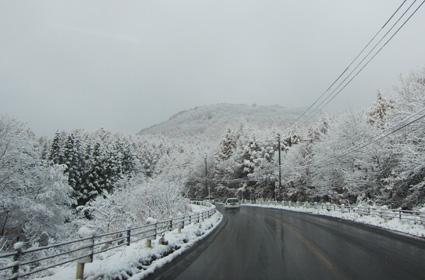 駒止20121117-4