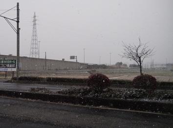 郡山市内雪