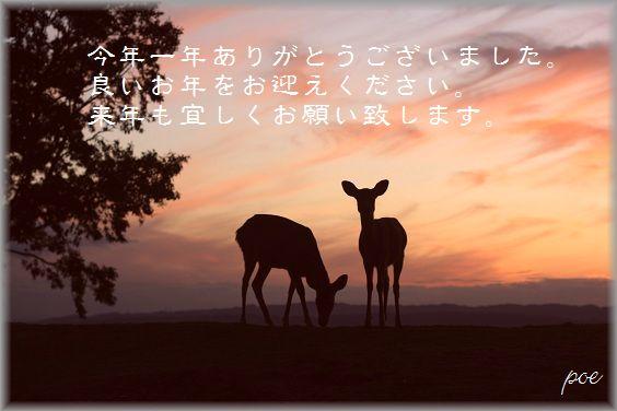 IMG_5636blog.jpg