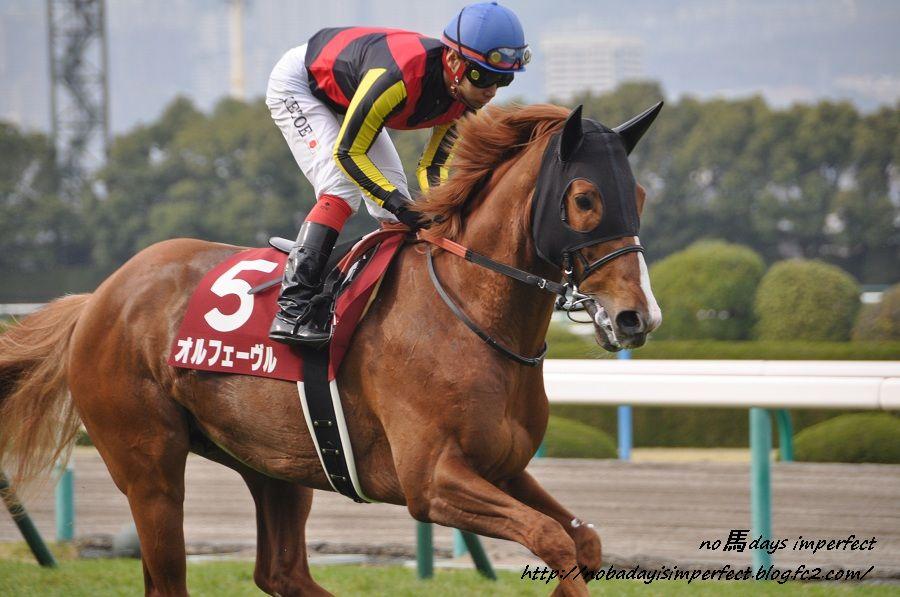 2013大阪杯 返し馬にて。オルフェーヴル号