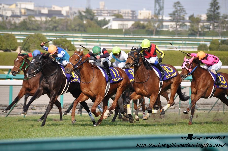 2012桜花賞 直線にて。