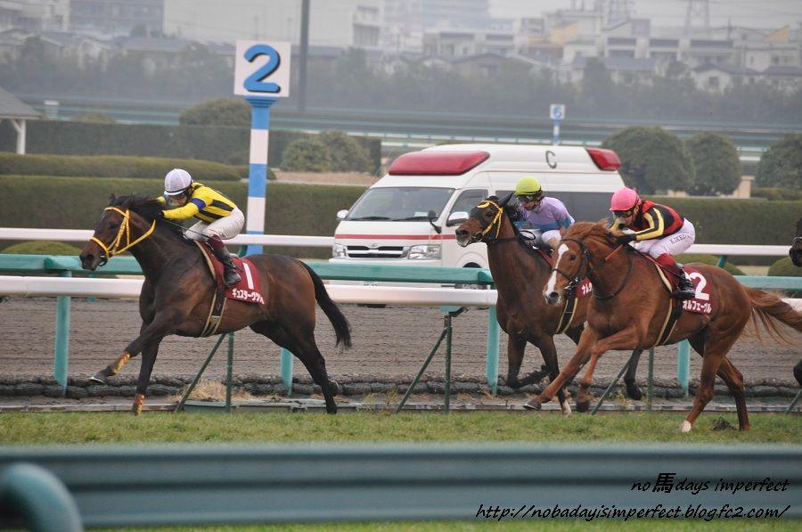 2012阪神大賞典 直線にて。オルフェーヴル号