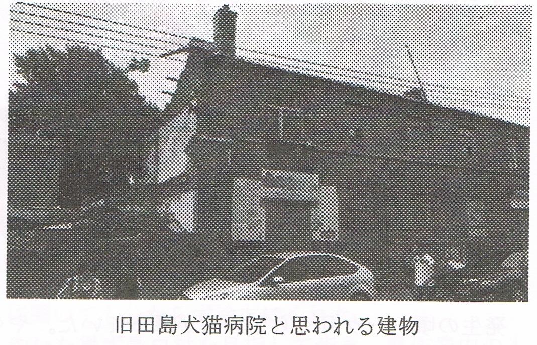 田島犬猫病院