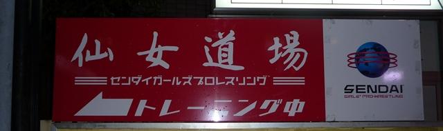 sakuru01.jpg