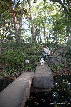 20141028-_MG_5490.jpg