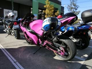 ピンクの隼