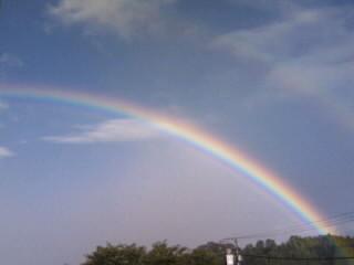 綺麗な虹。